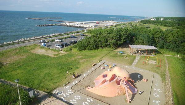 関分記念公園の展望台からたこ公園を見下ろす