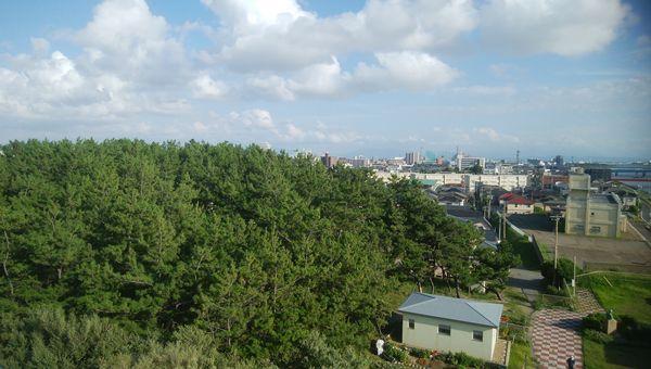 関分記念公園の展望台から県庁方向を見る