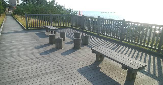 海浜植物園の遊歩道その2