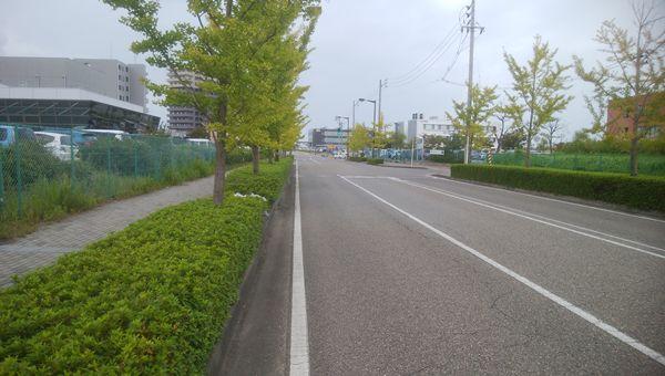 三条小須戸線から美咲町1丁目方向へ向かう道