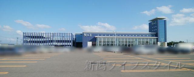 N-1亀貝店