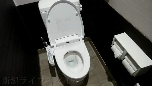 ツルハドラッグ新潟巻店のトイレの大便器