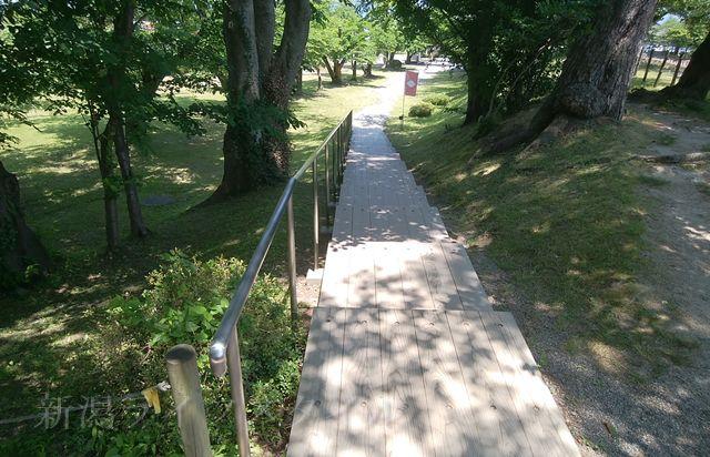 新発田城の旧二ノ丸隅櫓に向かう道。趣がある。