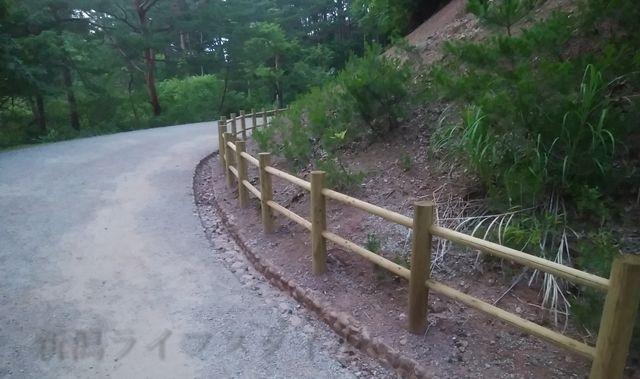 あやめ園の戻りルートの道