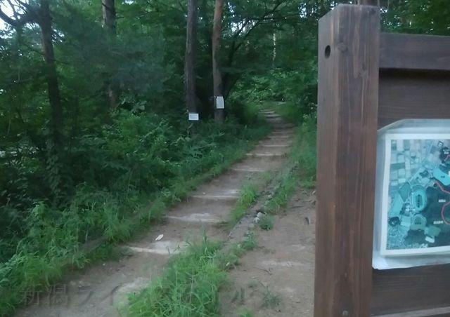 五十公野公園あやめ園の山頂付近にあった登りの細い道