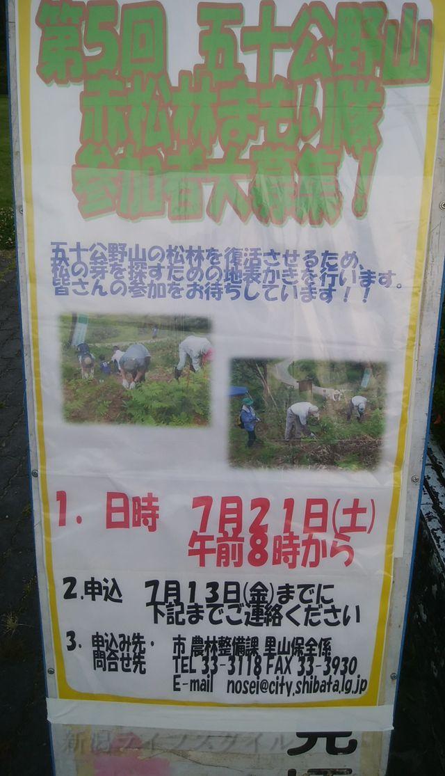 五十公野山赤松林まもり隊参加者募集中の看板