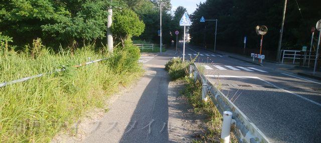 関屋浜の近くの道路