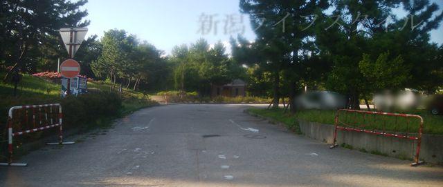 関屋浜の近くの道路。車が通れる幅の通路がある