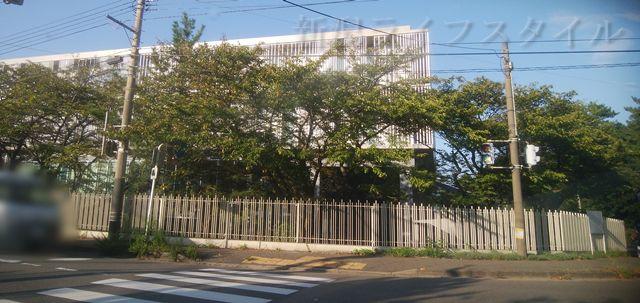 関屋浜の近くの道路の突き当りは青陵大学。