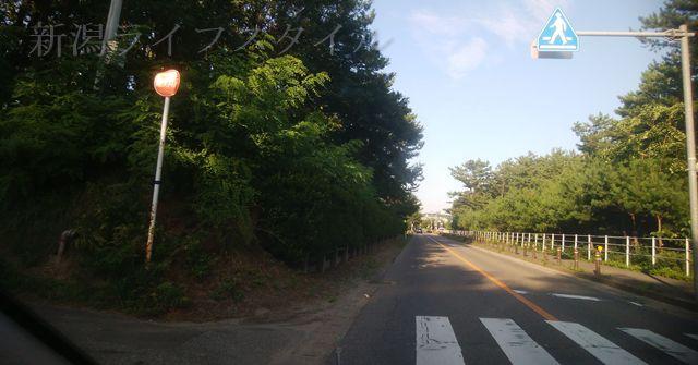 関屋浜の近くの道路。日赤口の通路のアップ