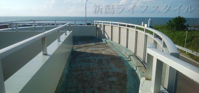 関屋浜近くの公衆トイレの屋上