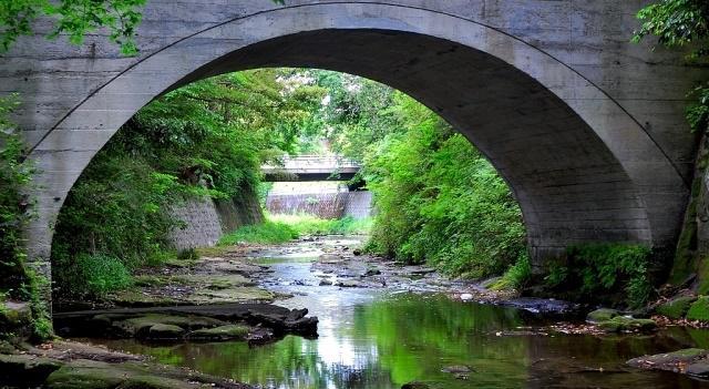木々がまばらに茂る小川にかかる石橋
