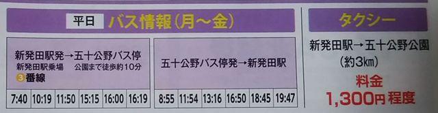 しばたあやめまつりのパンフレットのバスの運行と運賃の表その2