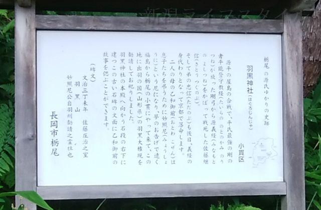 佐藤継信・忠信の母である乙和御前が妙照尼となり羽黒神社のもとを築いたという話が書かれた看板
