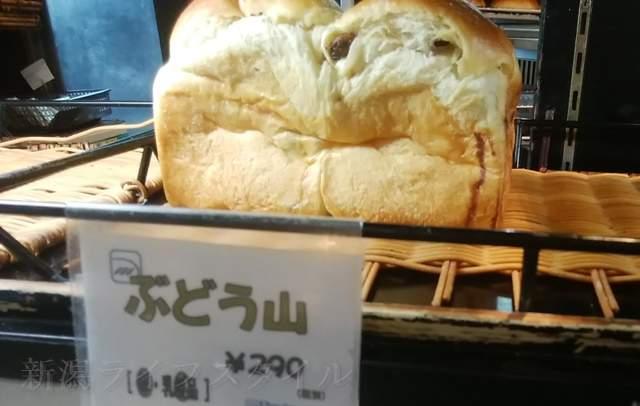 カワムラ本店のぶどう山