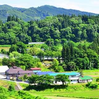緑に囲まれた家々