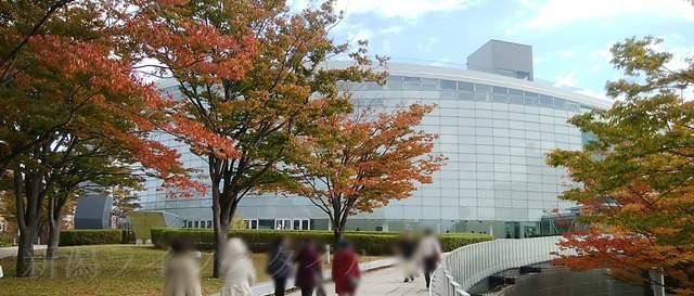 りゅーとぴあと取り囲む木々の紅葉