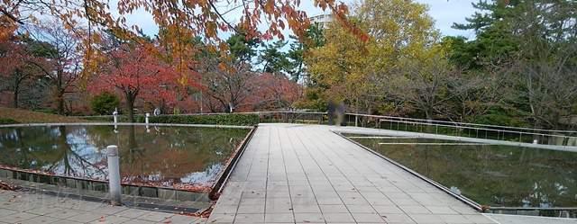 白山公園空中庭園の池