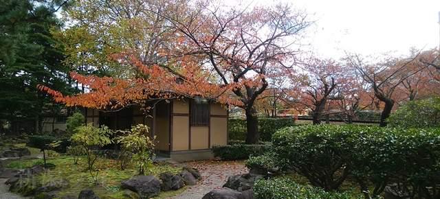 白山神社のトイレとその周りの紅葉する木々