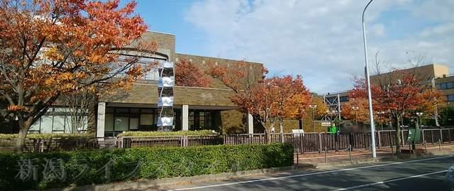新潟市美術館を斜め正面から望む。美術館を取り囲む木々が紅葉している