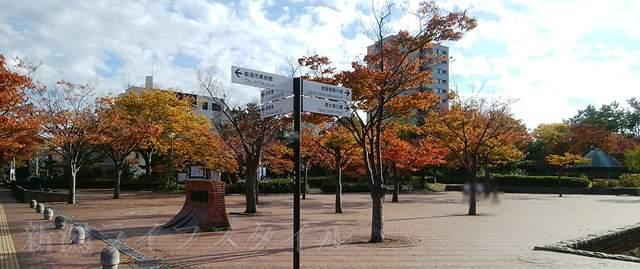 西大畑公園の中央広場