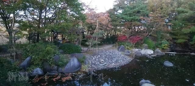鳥屋野中央公園(鏑木エリア)の池の向こうに紅葉が映える