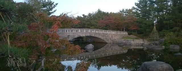 鳥屋野中央公園(鏑木エリア)の池の手前から石橋を横向きに遠めに観た風景