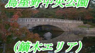 鳥屋野中央公園(鏑木エリア)の石橋と池
