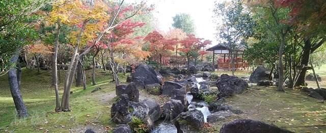 濁川公園の日本庭園の紅葉その2