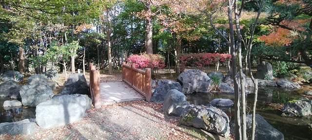 濁川公園の日本庭園の紅葉その1