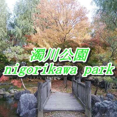 濁川公園の木橋と池