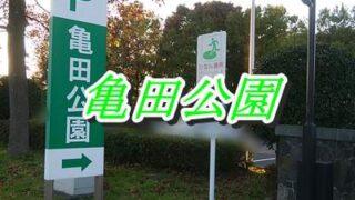亀田公園の入口の看板