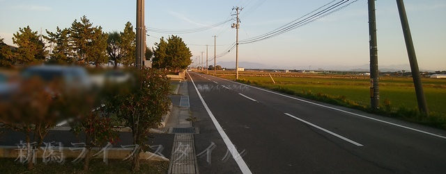 舞平公園の前の道路と駐車場
