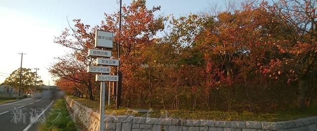 舞平公園の入口の看板と赤く染まった木々