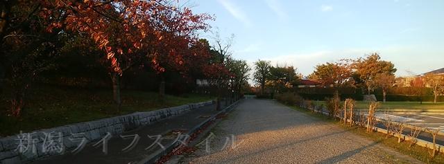 舞平公園の入口から園内に向かう通路