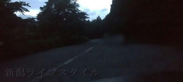 福井ほたるの里コース登山口の駐車場