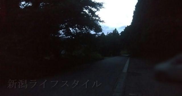 福井ほたるの里コース登山口の奥の方を望む
