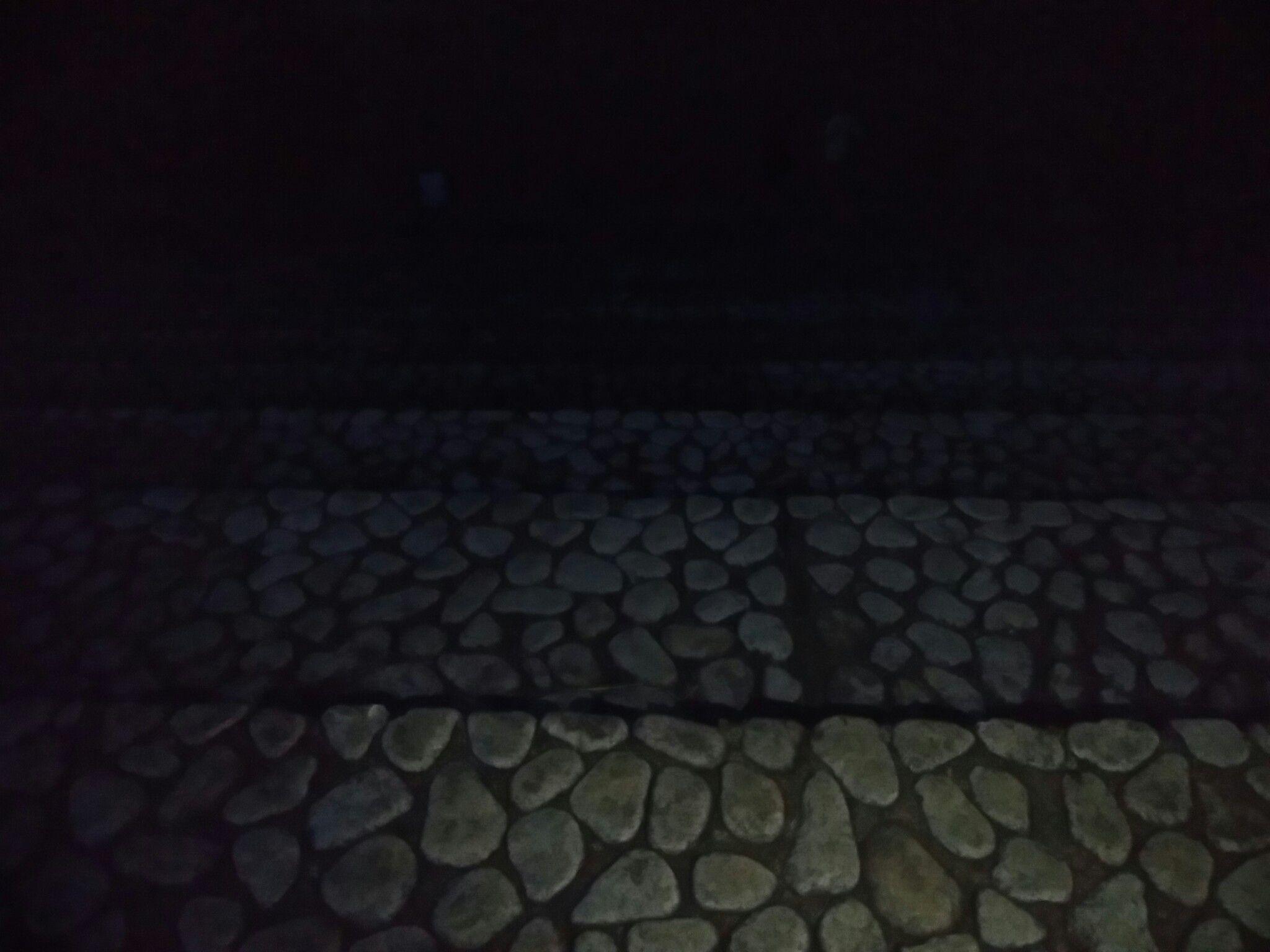 じょんのび館裏手の道路の向こう側にある石の階段