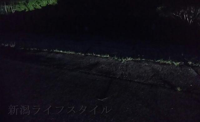 じょんのび館裏手の道沿いにある石の階段の2つめ
