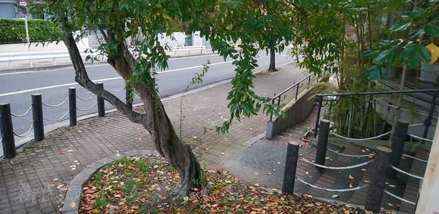 異人池ヒルズ横の階段