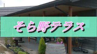 そら野テラスの正面外観の画像の上に「そら野テラス」というピンクの文字