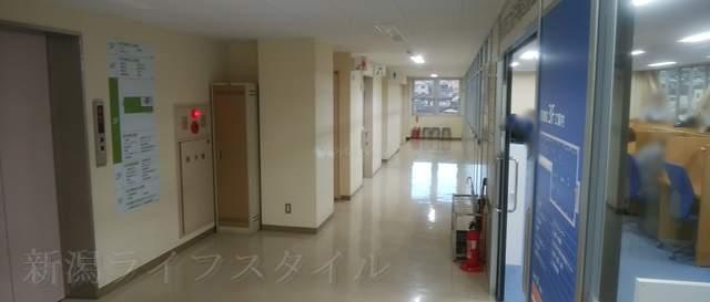 坂井輪図書館の3Fのトイレがある廊下