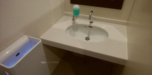 ナチュレ片山のトイレの手洗い場