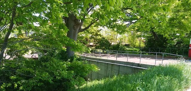 ランプリールの三条小須戸線側の入り口の橋