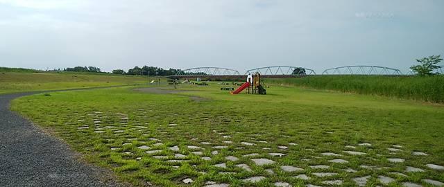 阿賀野川津島屋緑地を駐車場方向から見た全体像