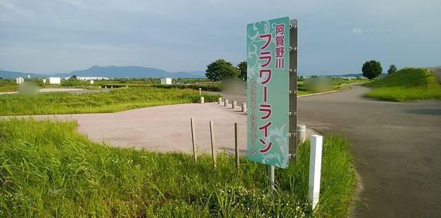 阿賀野川床固め公園にあるフラワーラインと書かれた看板