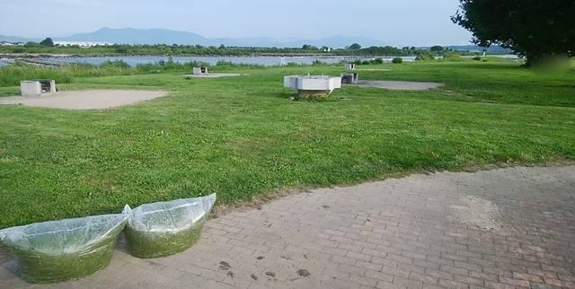 阿賀野川床固め公園のバーベキューエリアの全体像