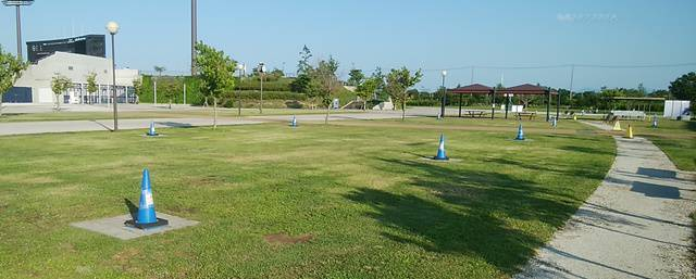 スポーツ公園のバーベキューエリア。芝生が広がる