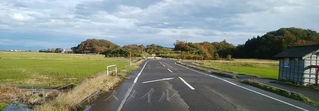 上堰潟公園そばの県道562号線の紅葉道その3