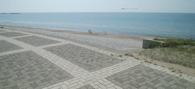 小針浜の地面と海